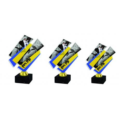Pokal ACRYL borilni športi ACZM33ABC